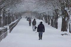 Verschiedene Leute und Hunde sind auf einer schneebedeckten breiten Straße Wintersportweg des Tages Rest für die ganze Familie au stockfoto