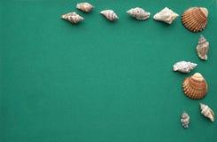 Verschiedene Marineeinzelteile auf grünem Hintergrund Lizenzfreies Stockfoto