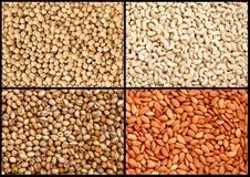 Verschiedene Nüsse (Acajoubaum, Mandel, Pistazie, Erdnüsse) Stockfotografie