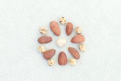 verschiedene Nüsse ausgebreitet in Form einer Blume auf hellem backgr Lizenzfreie Stockbilder