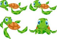 Verschiedene nette Meeresschildkrötekarikatur Lizenzfreies Stockfoto