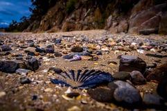 Verschiedene Oberteile auf Strand lizenzfreies stockfoto