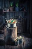 Verschiedene Ostereier mit Heu und Federn Stockfotos