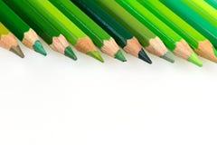 Verschiedene Pastelle der grünen Abstufungen Stockfoto