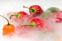 Verschiedene Peperoni mit Dampf Stockbilder