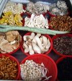 12 verschiedene Spezies Pilze auf dem Zähler des chinesischen Restaurants Stockfotos