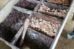 Verschiedene Stadien des Kakaosamens im Kasten in der Vorbereitung, zum der Schokolade zu machen stockfotografie
