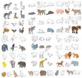 Verschiedene Tiere eingestellt Stockbilder