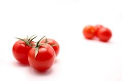 Verschiedene Tomaten Lizenzfreie Stockfotografie