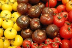 Verschiedene Tomaten Lizenzfreies Stockbild