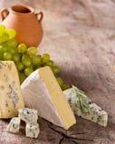 Verschiedene Typen des Käses stockbilder