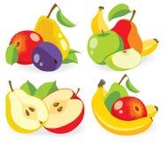 Verschiedene Vektorsammlung der frischen Früchte Lizenzfreie Stockfotografie