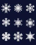 Verschiedene weiße Schneeflocken Stockbild