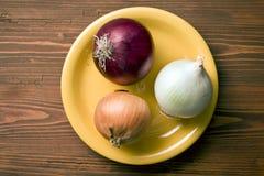 Verschiedene Zwiebeln auf Platte Stockfotos