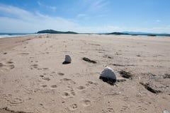 Verschiedener Abfall auf der sandigen Küste geworfen Meereswogen Mit gelbem Sand und blauer Himmel Fokus in Richtung zu den niedr Lizenzfreie Stockbilder