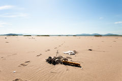 Verschiedener Abfall auf der sandigen Küste geworfen Meereswogen Mit gelbem Sand und blauer Himmel Fokus in Richtung zu den niedr Lizenzfreies Stockfoto