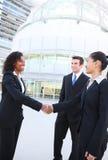 Verschiedenes attraktives Geschäfts-Team Stockfotos