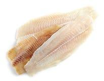 Verschiedenes frisches rohes Fischfilet Stockbilder