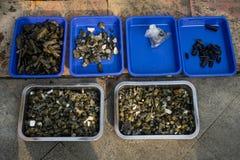 Verschiedenes nettes und buntes von Edelsteinen und von Achat verkauften im traditionellen Markt in Bogor Indonesien Stockfotos