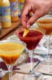 Verschillend soort salsasaus Royalty-vrije Stock Foto