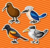 Verschillend soort vogels stock illustratie