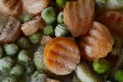 Verschillende bevroren groenten royalty-vrije stock afbeelding