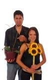 Verschillende bloemen Royalty-vrije Stock Foto's