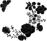 verschillende bloemen Stock Foto