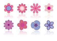 Verschillende bloemen - Vectorbeeld Royalty-vrije Stock Foto