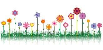 Verschillende bloemen - Vectorbeeld Royalty-vrije Stock Afbeeldingen