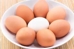 Verschillende eieren Stock Foto