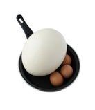 Verschillende eieren op pan Royalty-vrije Stock Afbeeldingen