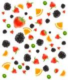 Verschillende fruit en bessen Royalty-vrije Stock Foto's