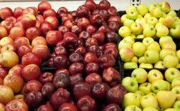 Verschillende gekleurde appelen Stock Foto