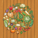 Verschillende groententekeningen Stock Fotografie
