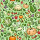 Verschillende groententekeningen Stock Foto's