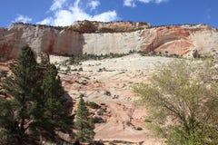 Verschillende hoek van Boog in Zion National Park Stock Foto's