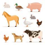 Verschillende huisdieren op landbouwbedrijf Ganzen, eenden, kippenkippen en vee Vector geplaatste illustraties stock illustratie