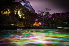 Verschillende kleur van lichten in de watervijver bij nacht bij de Tuin van Mifuneyama Rakuen in Saga, Japan royalty-vrije stock afbeelding