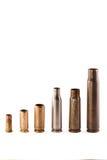 Verschillende kogelshells Royalty-vrije Stock Foto's