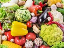 Verschillende organische groenten Multicolored voedselachtergrond stock afbeelding
