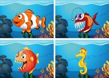 Verschillende overzeese dieren in het overzees Royalty-vrije Stock Foto