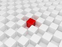 Verschillende rode kubus Stock Foto