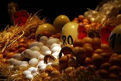 Verschillende schaduwen van eieren. Stock Foto's