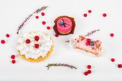 Verschillende soort van mooi gebakje, kleine kleurrijke zoete cakes Stock Foto's