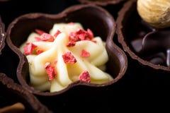 Verschillende soorten chocoladeclose-up diverse chocoladepralin stock foto