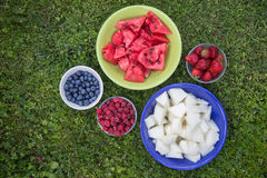 Verschillende soorten fruit en bessen Royalty-vrije Stock Foto