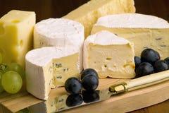 Verschillende soorten kaas Royalty-vrije Stock Afbeeldingen