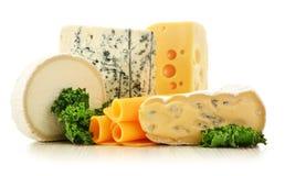 Verschillende soorten kaas op witte achtergrond Stock Foto's