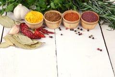 Verschillende soorten kruiden en kruiden Royalty-vrije Stock Fotografie